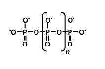 ポリリン酸の化学構造