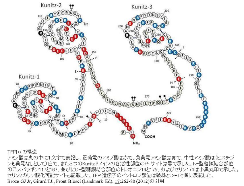 TFPIαの構造(Broze GJ Jr, Girard TJ.より引用)