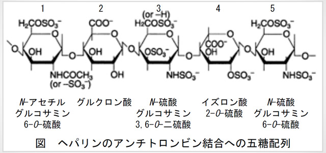 ヘパリンのアンチトロンビン結合への五糖配列